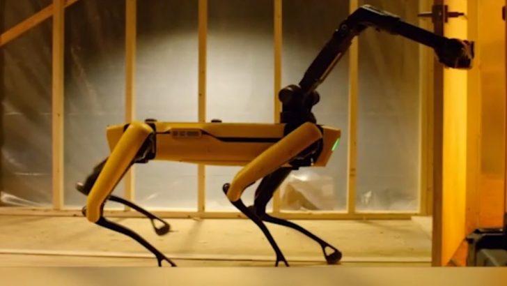 Robot Güvenlik Köpeği Petrol Rafinerisinde İşe Alındı